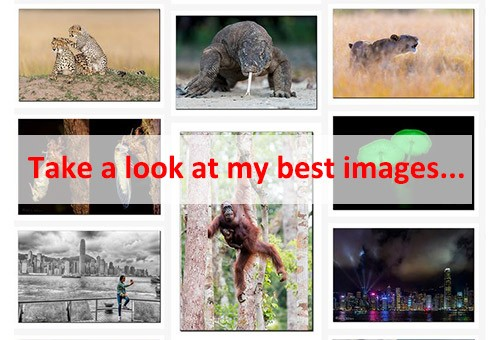 Featured-images